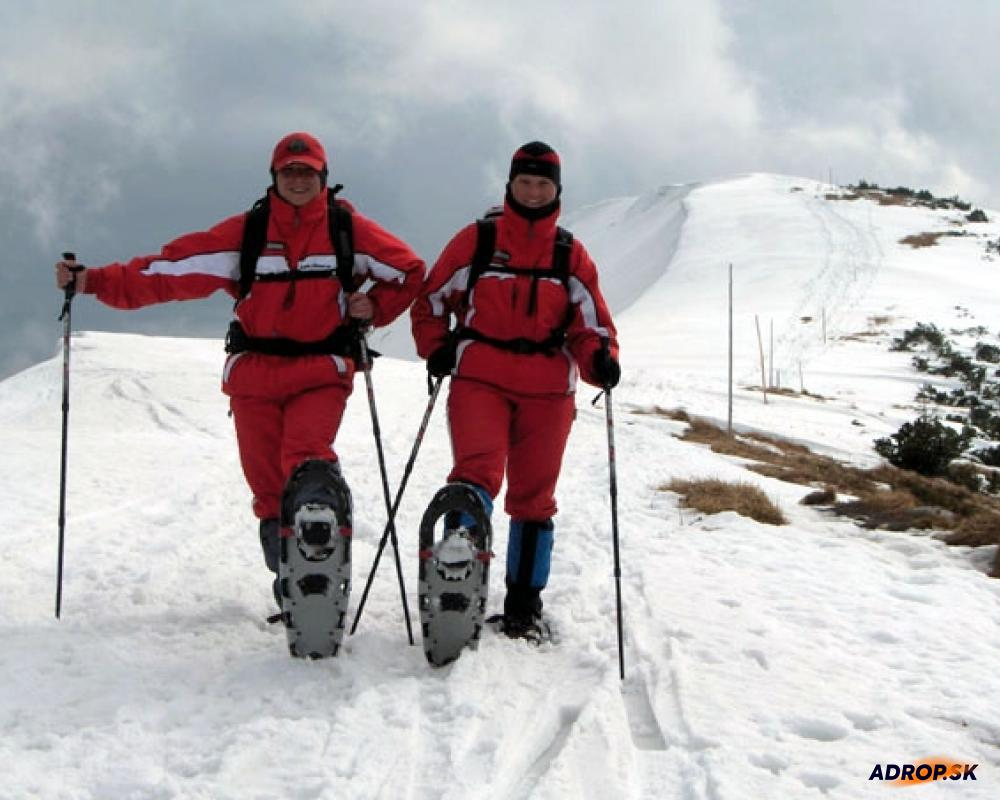 Snežnicové putovanie